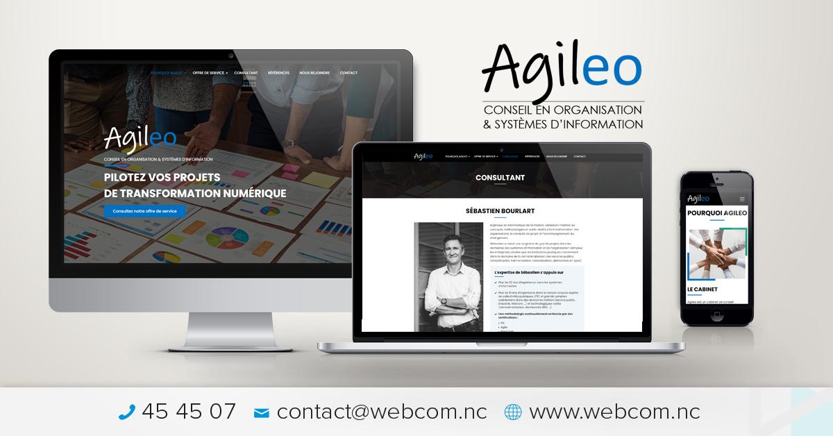 Création du site internet AGILEO